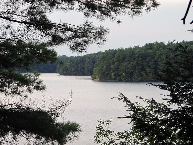 Judy Larocque loved to spend time at Lake Cochituate in Natick. (Dan Mauzy/WBUR)