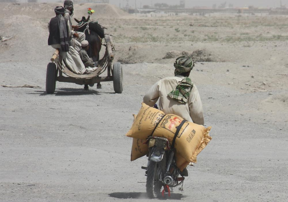 A Pakistani man carries sacks of fertilizer to smuggle into neighboring Afghanistan at Pakistani border town of Chaman. (AP)