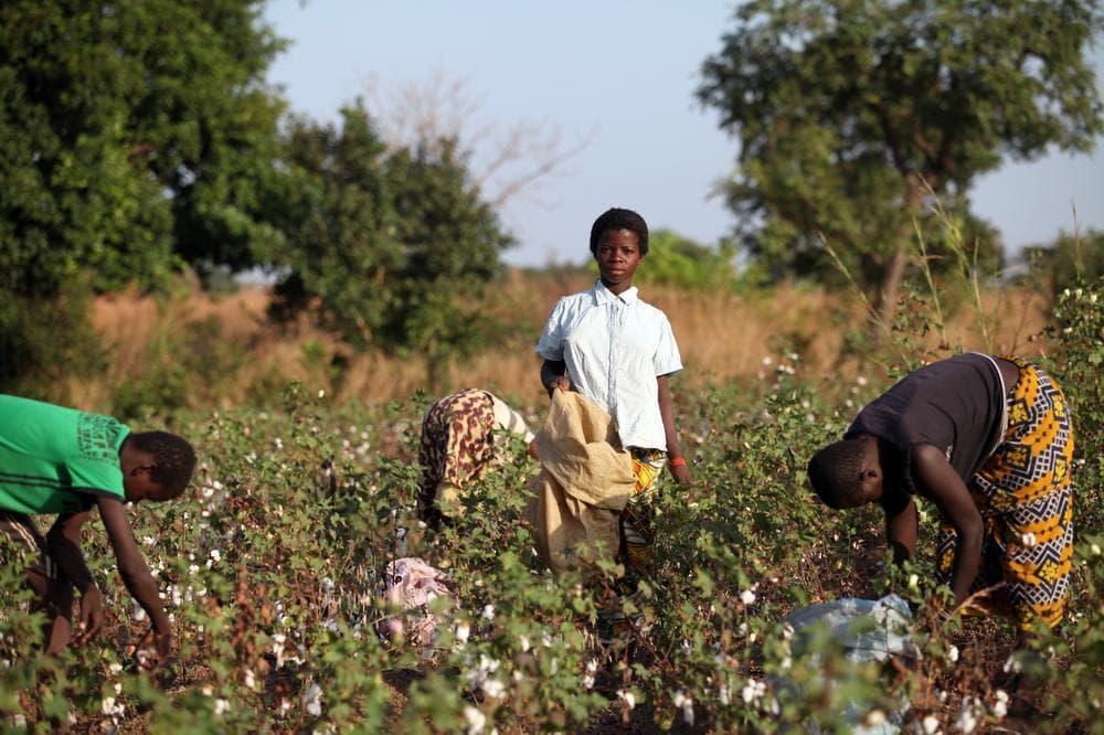 26e967b7c4 Child Labor Used In Victoria s Secret  Fair Trade  Products