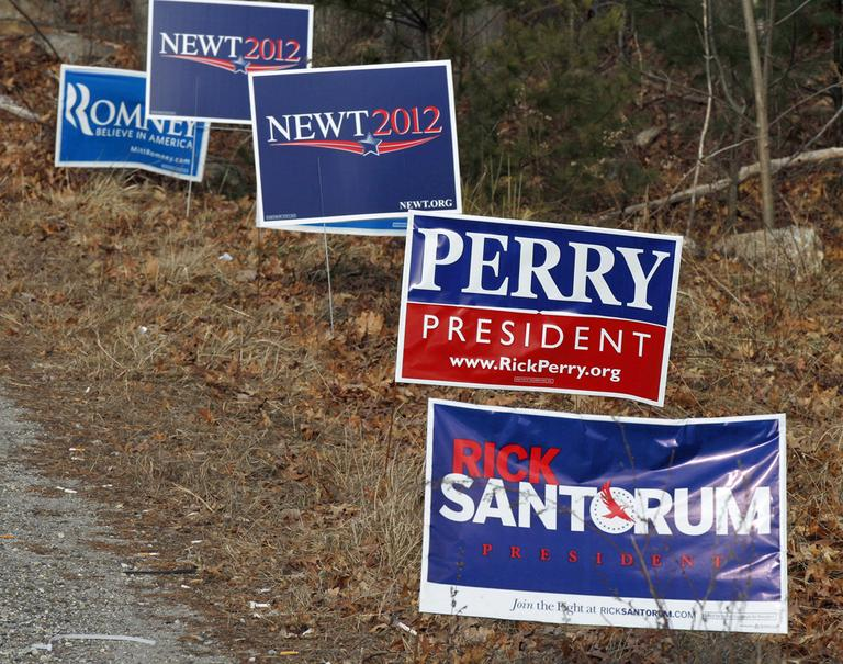 Campaign signs line a road in Derry, N.H., Tuesday Jan. 10, 2012, during New Hampshire's first in the national presidential primary. (AP)