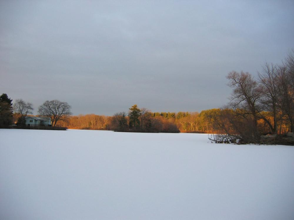 Wellesley's Morses Pond in the winter. (Courtesy of Lisa Rogers)