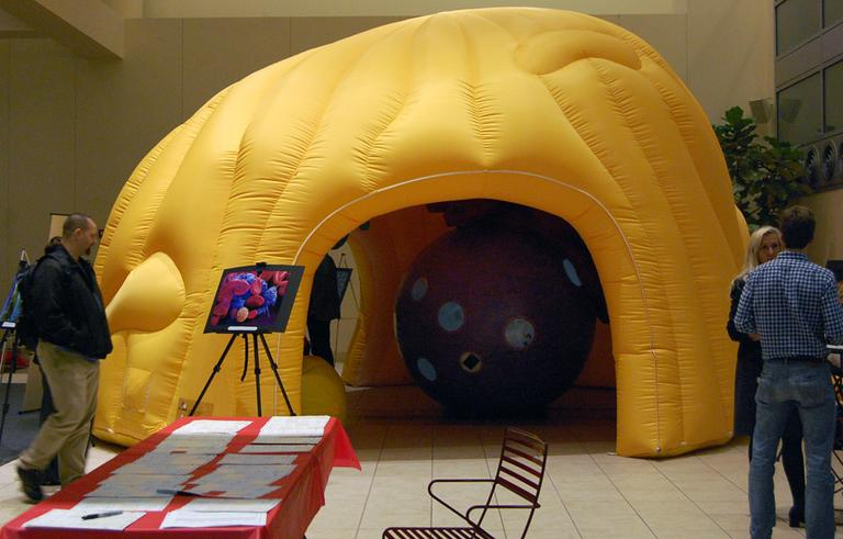 The Giant Cell on display as part of the Cambridge Science Festival. (Nate Goldman/WBUR)