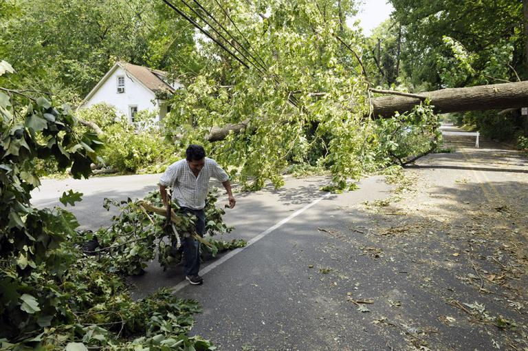 A worker clears debris from a large downed tree in Falls Church, Va., Sunday. (AP)
