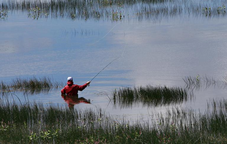 Corey Slater fly fishes in Lower Lake Mary Tuesday, Aug. 3, 2010 near Flagstaff, Ariz. (AP)