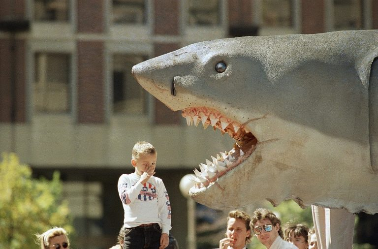 "Jesse Bigham of North Quincy, MA., reacts when taking a close look at Bruce, the 2-ton, 25-foot shark from the movie ""Jaws"" on Sept. 15, 1988, while the shark was en route to the Museum of Science in Boston . (AP)"