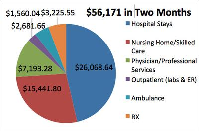 CLICK TO ENLARGE: A breakdown of two months' of Beder's health bills