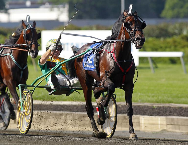 Market Share (2), driven by Tim Tetrick, heads to the finish line to win the Hambletonian horse race for trotters at Meadowlands Race Track in East Rutherford, N.J., in August. (AP)