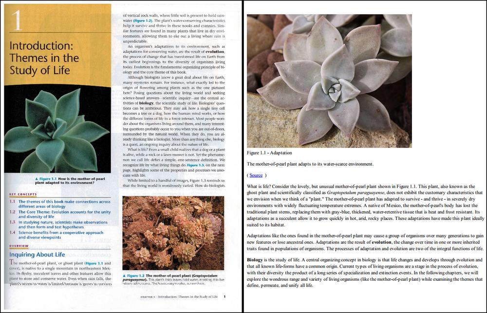 Boston startup Boundless has created free virtual textbooks online, right, to substitute for commonly assigned, expensive texts such as Campell Biology, left. (Click to enlarge.)