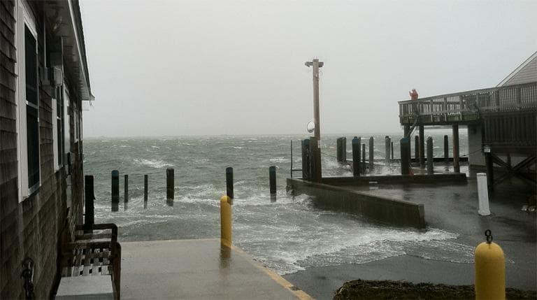 Chatham's fish pier Monday (Rachel Gotbaum/WBUR)