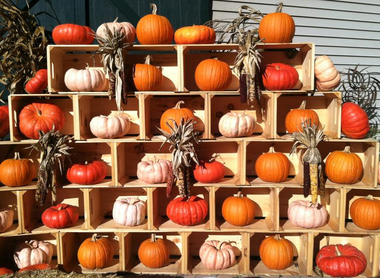 A pyramid of pumpkins at Stonewall Kitchen in York, Maine. (Kathy Gunst/Here & Now)