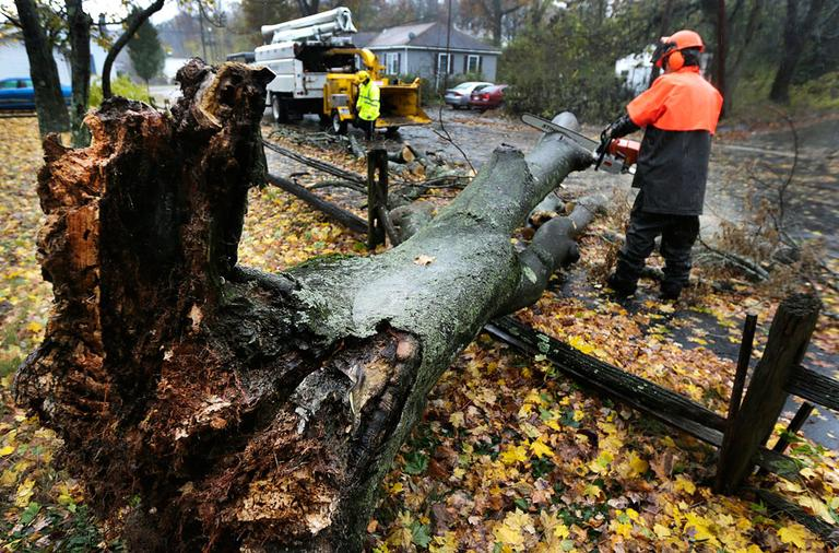 A worker clears a tree dropped by the high winds in Shrewsbury, Mass., Monday, Oct. 29, 2012. (AP Photo/Charles Krupa)
