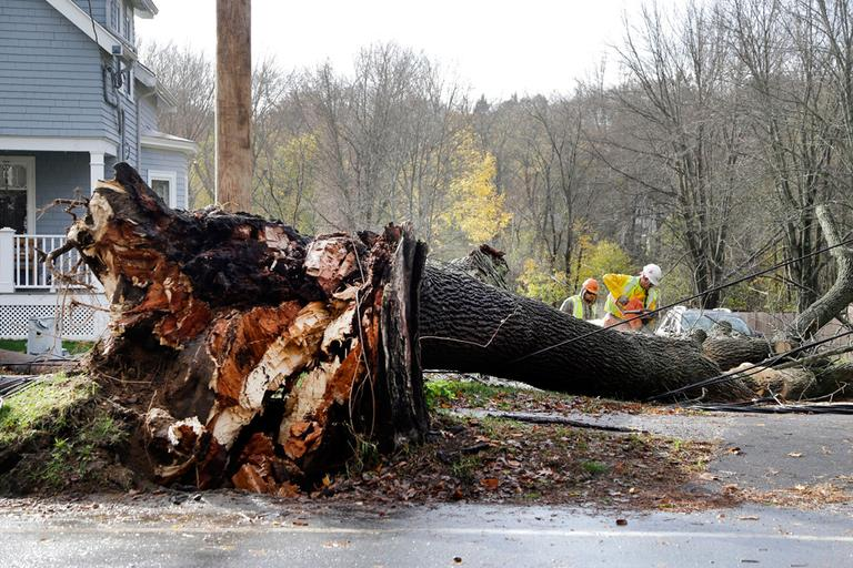 Workers on Tuesday use chainsaws to cut up a tree that fell on power lines in Andover. (Elise Amendola/AP)