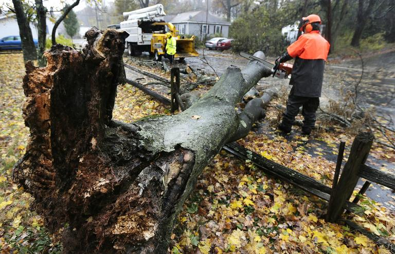 A worker clears a tree dropped by the high winds prior to landfall of Hurricane Sandy in Shrewsbury, Mass. on Monday. (Charles Krupa/AP)