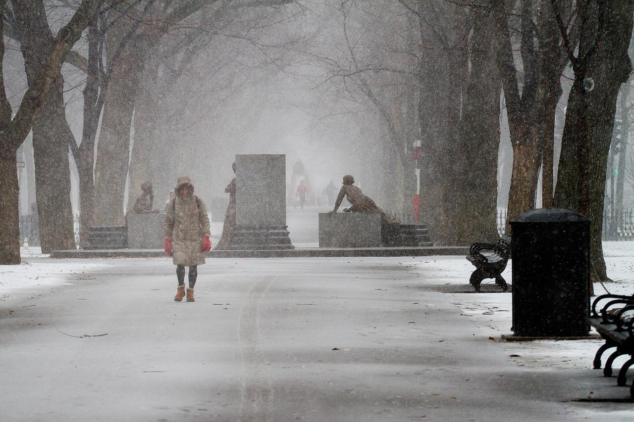A woman walks through Boston's Commonwealth Avenue Mall at the beginning of the two-day blizzard named Nemo. (Jesse Costa/WBUR)