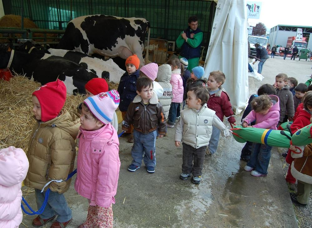 Pre-kindergarten children on an outing to a farm. (Monica Arellano-Ongpin/Flickr)