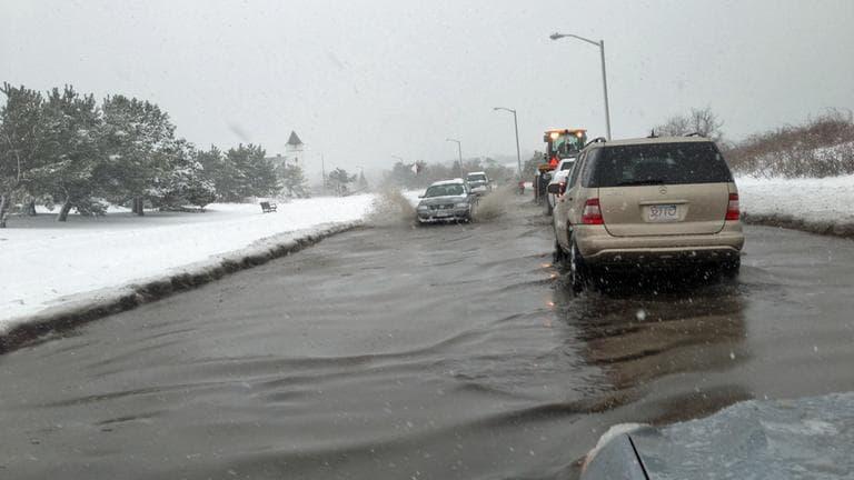 Nahant Road in Nahant floods on Friday morning. (Jesse Costa/WBUR)