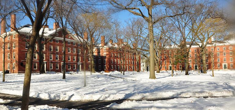 Harvard Yard is pictured in winter 2009. (chensiyuan/Wikimedia Commons)