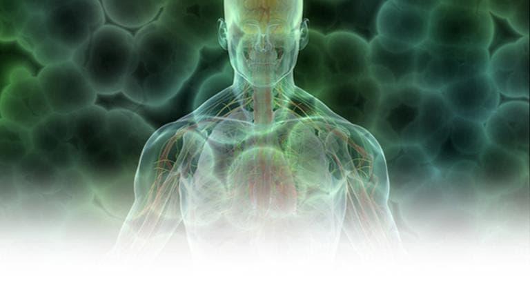 (Image: NIH Human Microbiome Project)