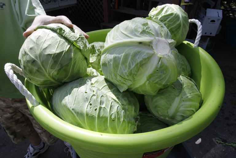 Heads of cabbage are stacked in a basket at a farm stand in Dracut, Mass., in July 2010. (Charles Krupa/AP)