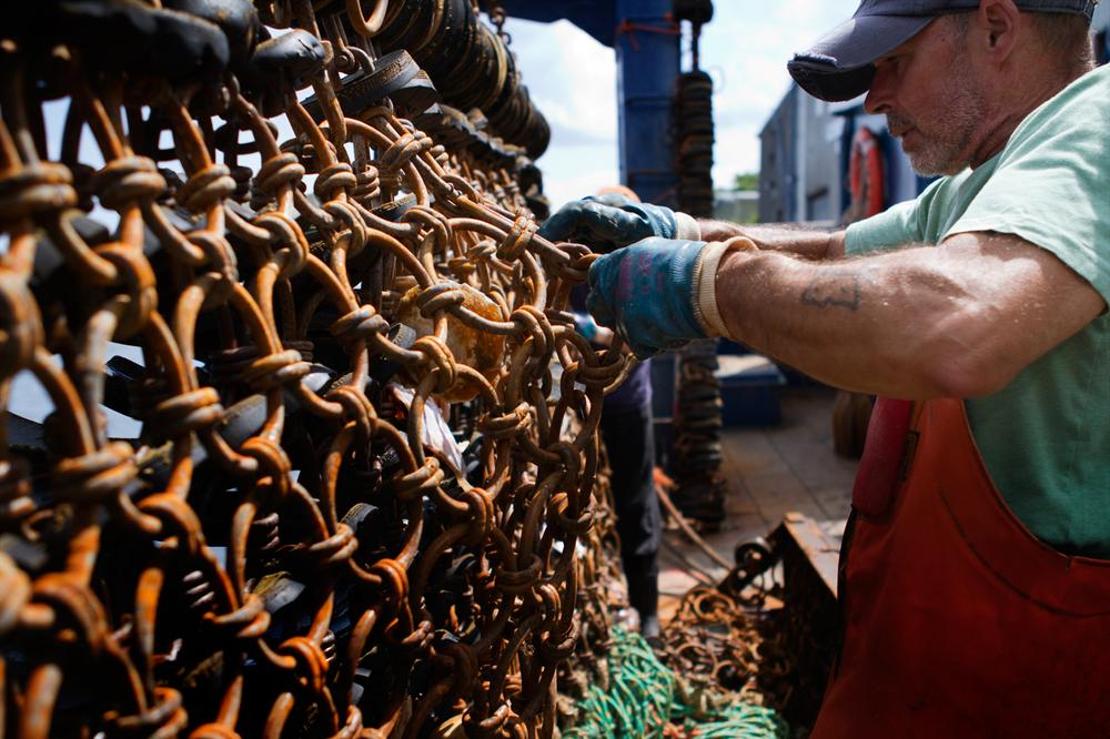 A New Bedford fishing crew member cleans the dredges after an eight-day voyage. (Jesse Costa/WBUR)