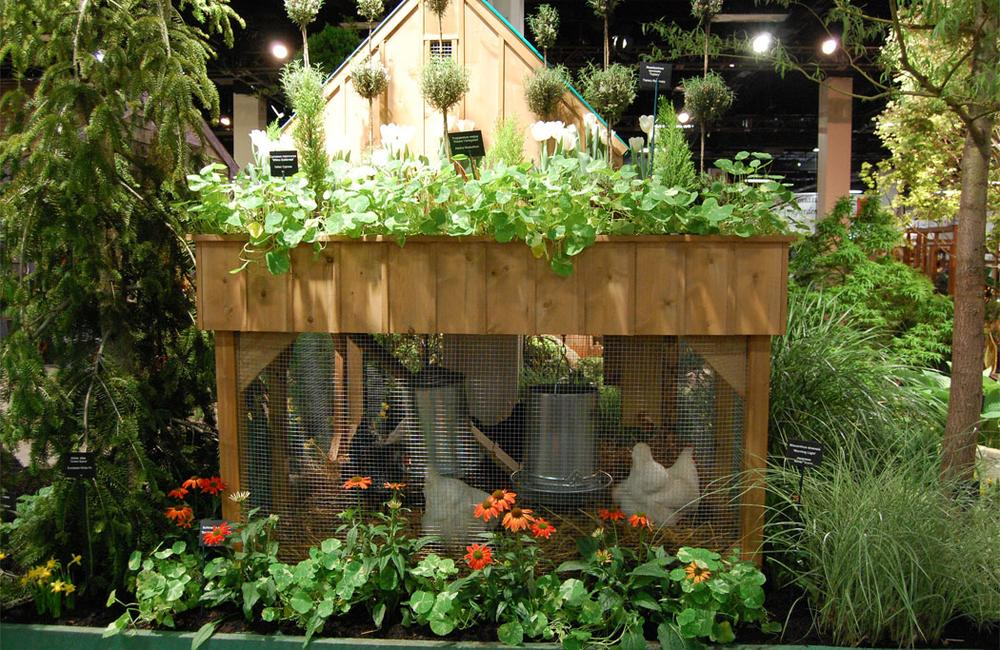 Forced plantings sprout on and around a chicken coop designed by Miskovsky Landscaping of Falmouth. (Greg Cook)