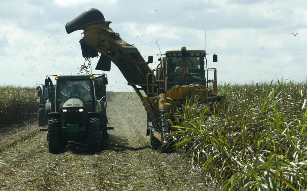 A harvester cuts and fills a tractor with sugar cane in Clewiston, Fla., Friday, Nov. 7, 2003. (Luis M. Alvarez/AP)