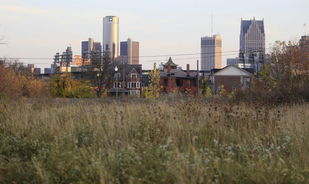 An empty field north of Detroit's downtown, Oct. 24, 2012. (Carlos Osorio/AP)