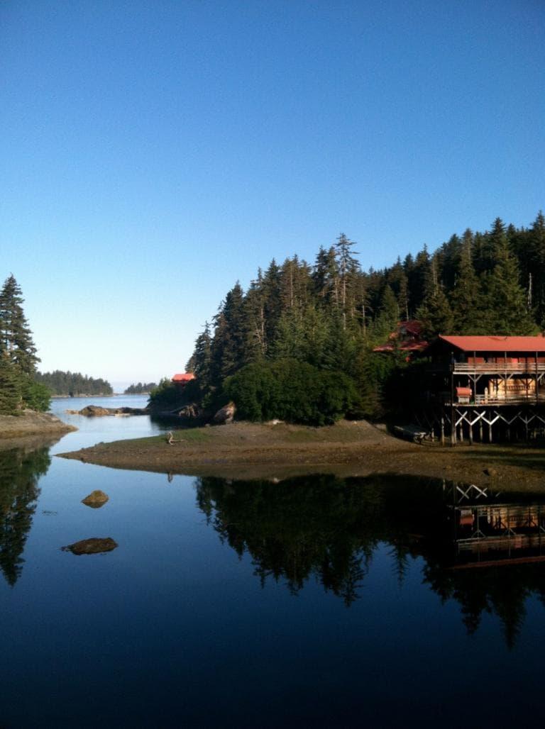 Tutka Bay Wilderness Lodge in Alaska. (Kathy Gunst/Here & Now)