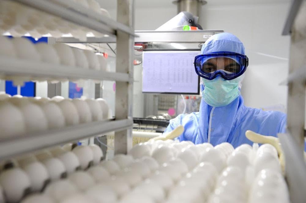 A Sanofi employee worked on the flu vaccine in France in 2009. (Sanofi Pasteur/Flickr)