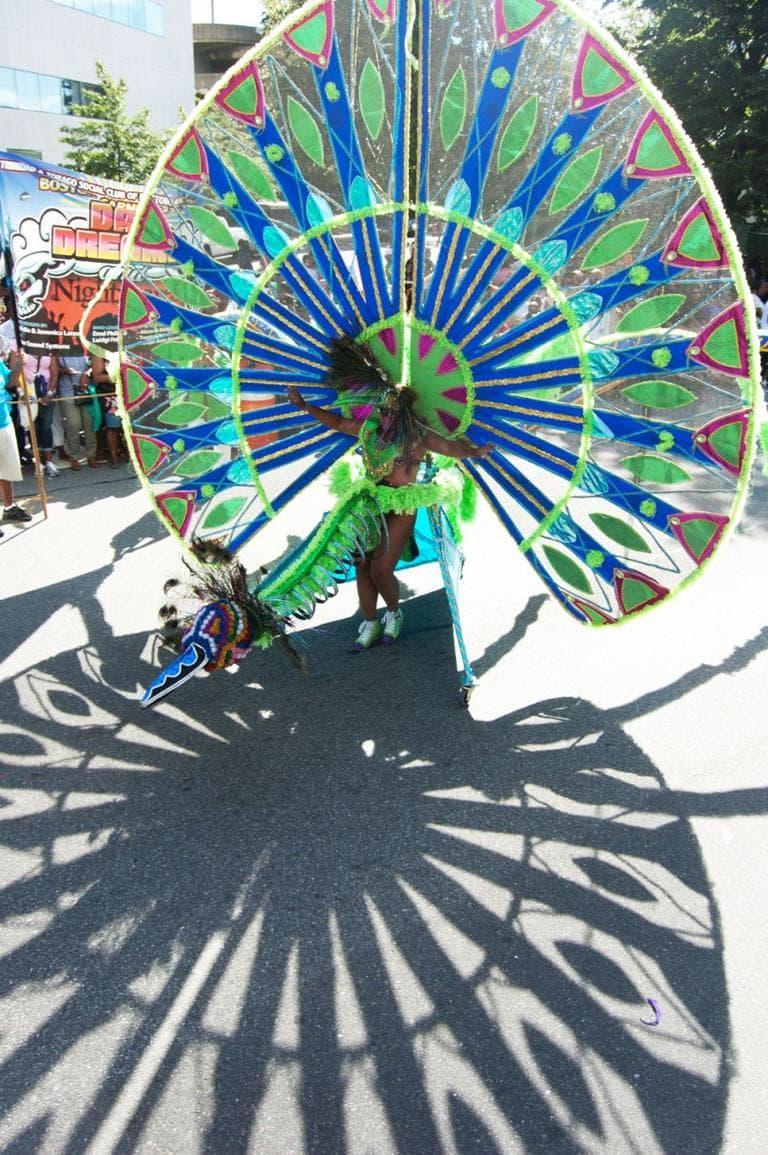 Cambridge Carnival International Parade. (Greg Cook)