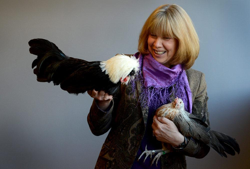 Jan Brett, pictured with her chickens. (Robin Lubbock/WBUR)