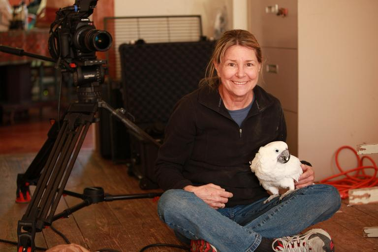 "Allison Argo is the filmmaker behind ""Parrot Confidential."" (Joe Brunette)"