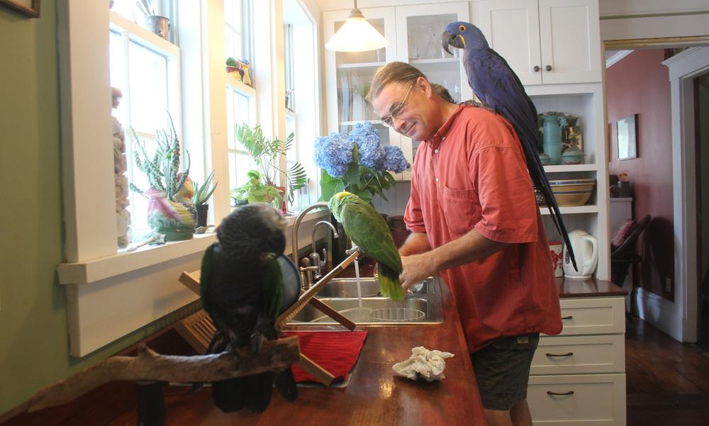 Marc Johnson, founder of Foster Parrots Ltd. is pictured with his parrots. (Joe Brunette)