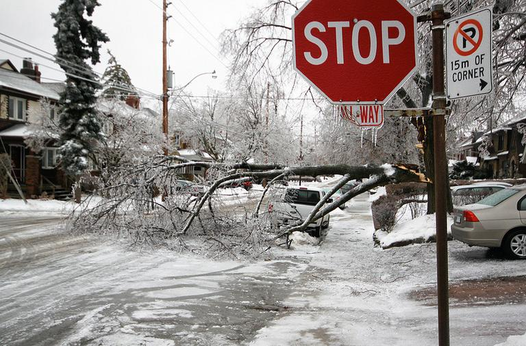 """Toronto in the aftermath of the storm an ice storm downed trees and brought single digit temperatures to Canada and parts of Michigan, Vermont and Maine. (<a href=""""http://www.flickr.com/photos/roozbeh11/with/11499211834/"""" target=""""_blank"""">Roozbeh Rokni</a>/Flickr)"""