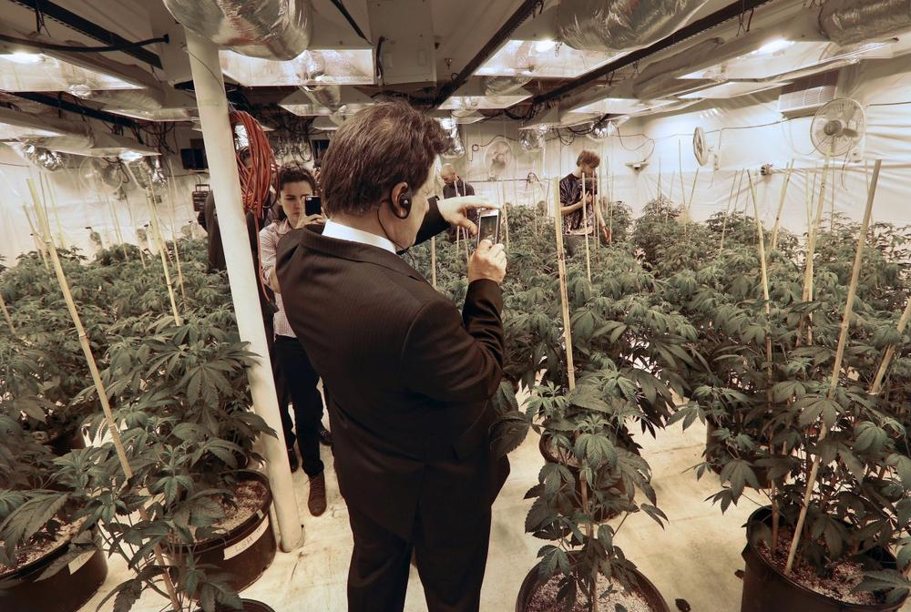 Mexican lawmaker Fernando Belaunzaran takes a photo with his phone while touring a legal marijuana grow room, at River Rock marijuana dispensary, in Denver, Wednesday Oct. 23, 2013. Several foreign lawmakers pushing for drug law reforms at home took a close up look the evolving legal marijuana industry in Colorado Wednesday. (AP Photo/Brennan Linsley)