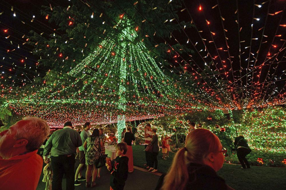 The Richards family reclaimed their world record by stringing up more than half a million Christmas lights around their home in suburban Canberra, Australia. Guinness World Records official Chris Sheedy confirmed on Nov. 25, 2013, that they had the most Christmas lights on a residential property with 502,165 twinkling bulbs. (AP Photo/AAPIMAGE, Alan Porritt)