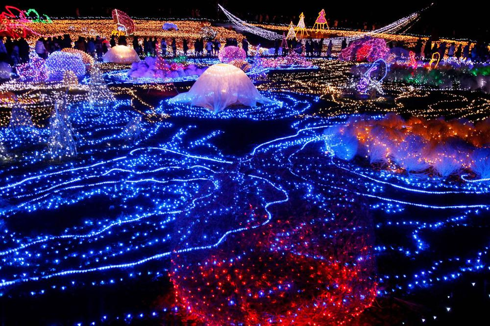 Christmas illuminations at a Tokyo park in Japan on Dec. 22, 2009. (AP Photo/Itsuo Inouye)