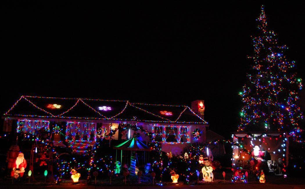 Stoneham Zoo Christmas Lights