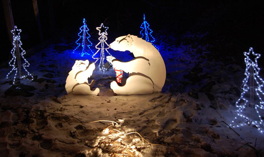 """Polar bears at the Stone Zoo's """"ZooLights."""" (Greg Cook)"""