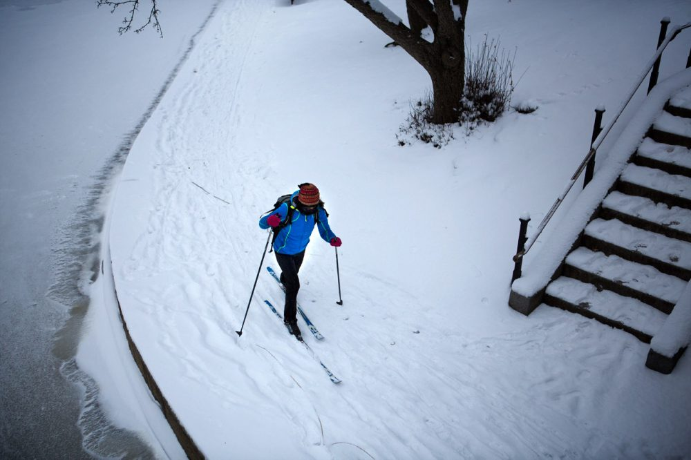 A woman cross-country skis by the pond at Boston's Public Garden. (Jesse Costa/WBUR)