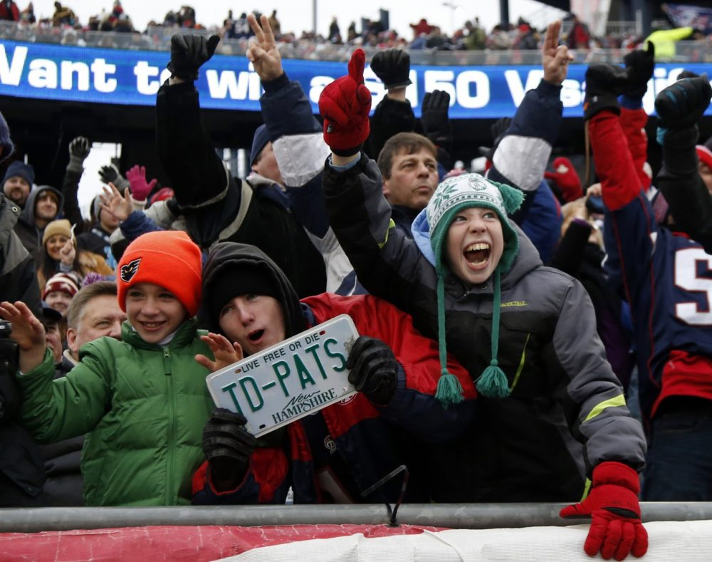 New England Patriots fans root against the Cleveland Browns Dec. 8, 2013 (AP/Elise Amendola)