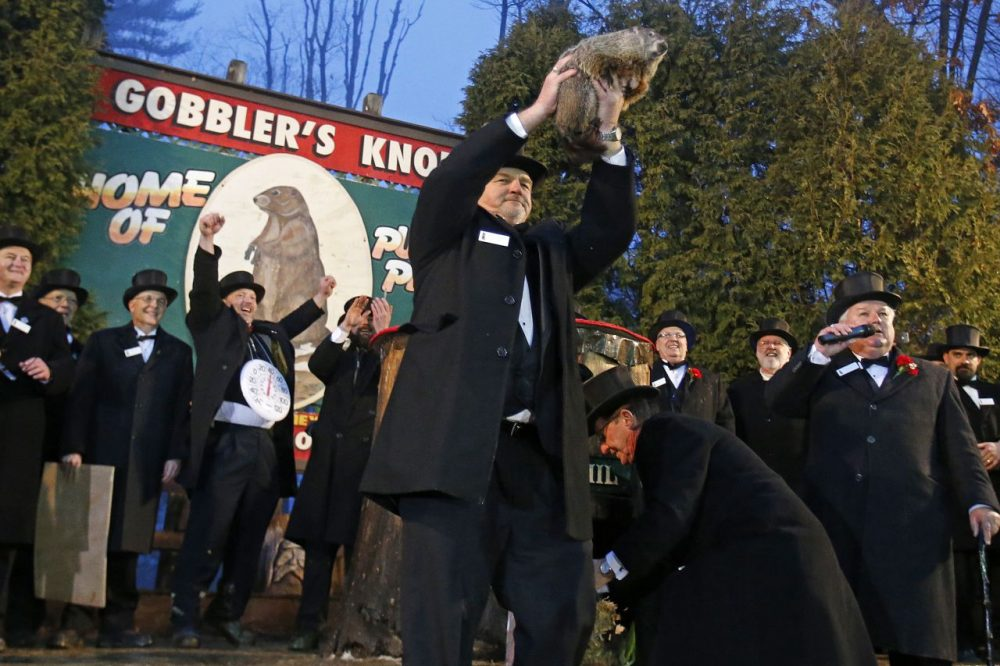 Punxsutawney Phil is held by handler John Griffiths after emerging from his burrow on Gobblers Knob in Punxsutawney, Pa., to see his shadow and forecast six more weeks of winter weather. (Gene J. Puskar/AP)