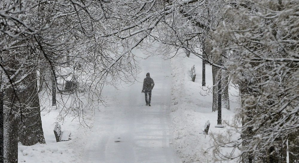 John D. Spooner: I have always believed in paying attention to the people around me -- in looking for trends and insights into character and behavior. In this photo, a pedestrian walks under snow covered trees on Boston Common in Boston, Tuesday, Feb. 18, 2014. (Michael Dwyer/AP)