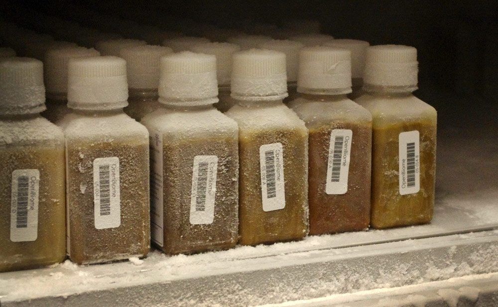 Bottles of frozen human stool for fecal transplants at the nation's first stool bank, OpenBiome. (Gabrielle Emanuel/WBUR)