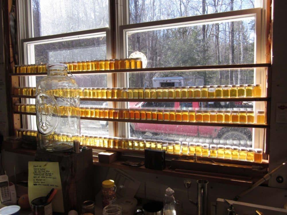 Sap and syrup in the windows at Bascom Maple Farms in New Hampshire (Courtesy Bascom Family / Da Capo Press)