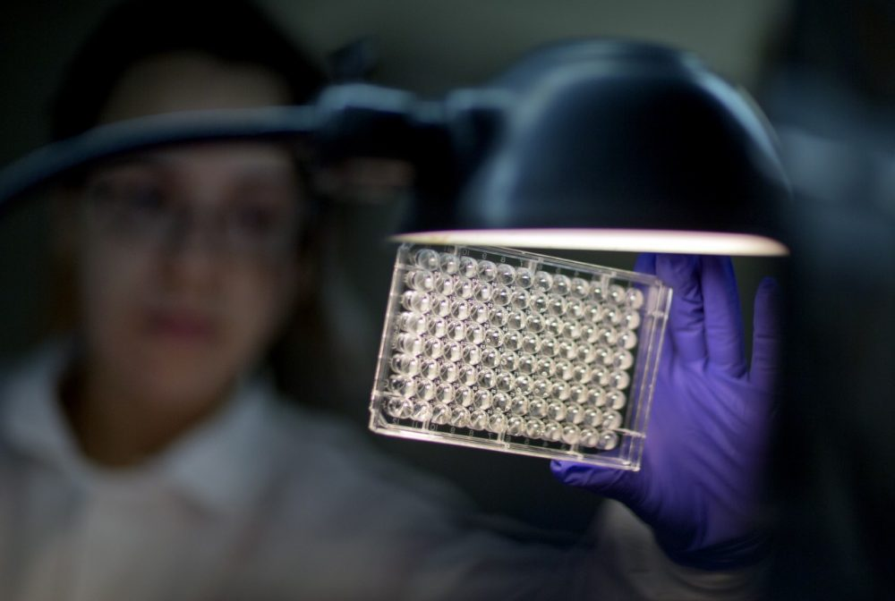 Microbiologist Tatiana Travis reads a panel to check on a bacterium's resistance to an antibiotic at the federal Centers for Disease Control and Prevention in Atlanta. (David Goldman/AP)
