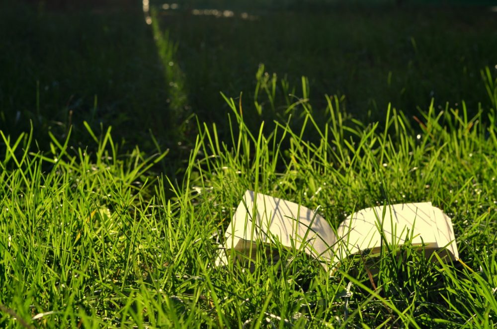 What are you looking forward to reading this summer? (Andrada Radu/Flickr)