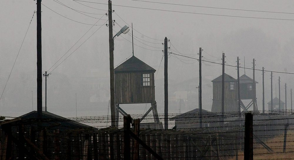 """Joshua Rubenstein: """"Initially, the soldiers did not understand what they were finding."""" Pictured, Watch towers and the barbed wire fence of the former Nazi death camp Majdanek outside the city of Lublin in eastern Poland on Wednesday, Nov. 9, 2005. (Czarek Sokolowski/AP)"""