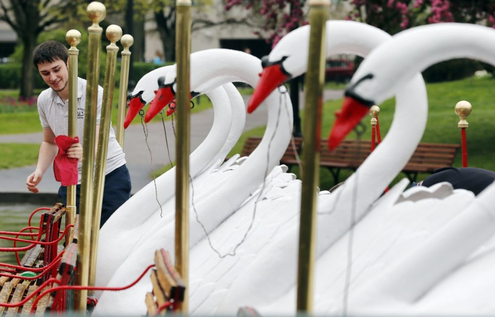 Gabe Edelman polishes the brass on the Swan Boats in the Public Gardens in Boston, Saturday, May 10, 2014. Temperatures in the Boston area were in the 70s on Saturday. (AP)