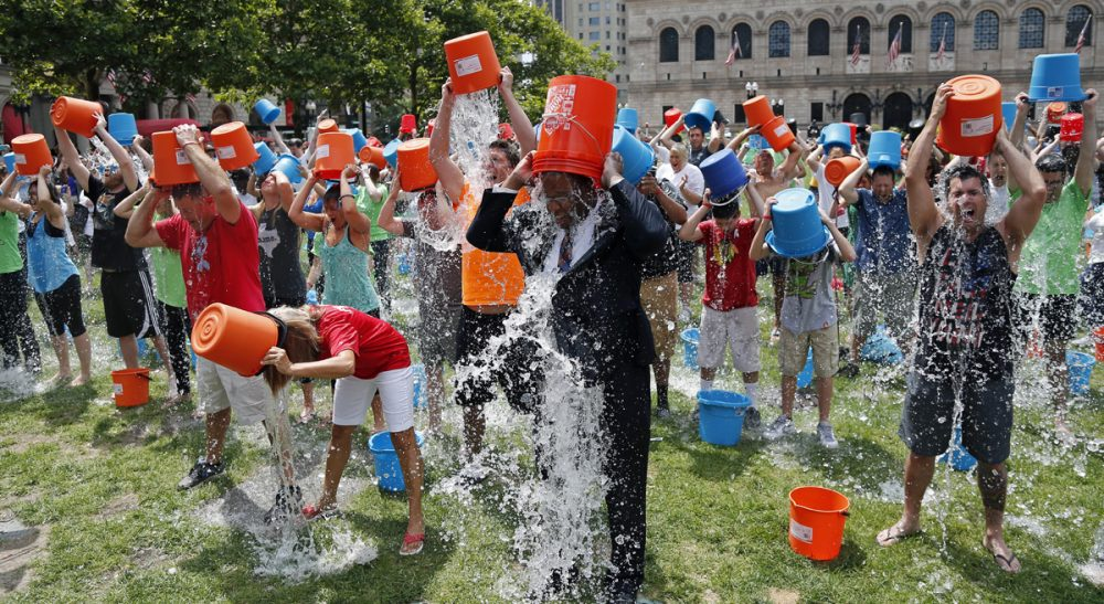 two views on the ice bucket challenge cognoscenti